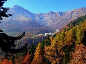 Foliage in Valle Oropa, Biella, Piemonte
